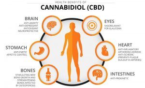 az, arizona, medical, marijuana, cannabis, CBD, oil, benefits, health, heal, social media